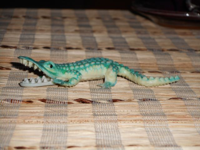 Alligator Guy